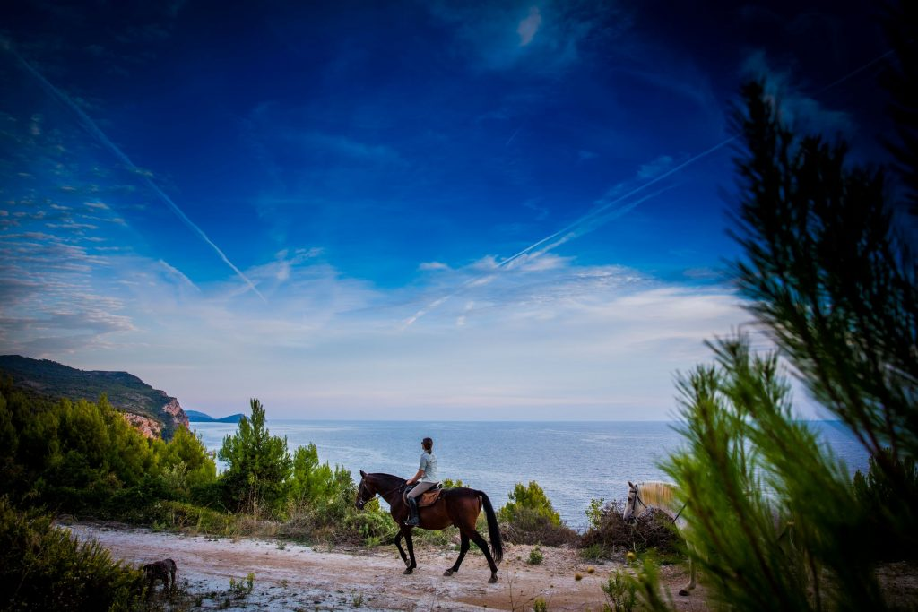 Horseback riding overlooking the open sea