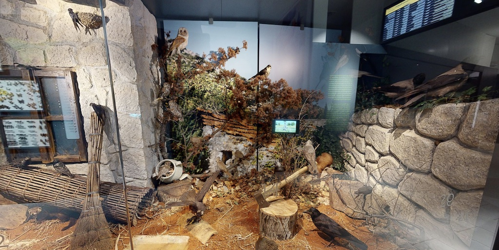 photograph of the natural history museum metković