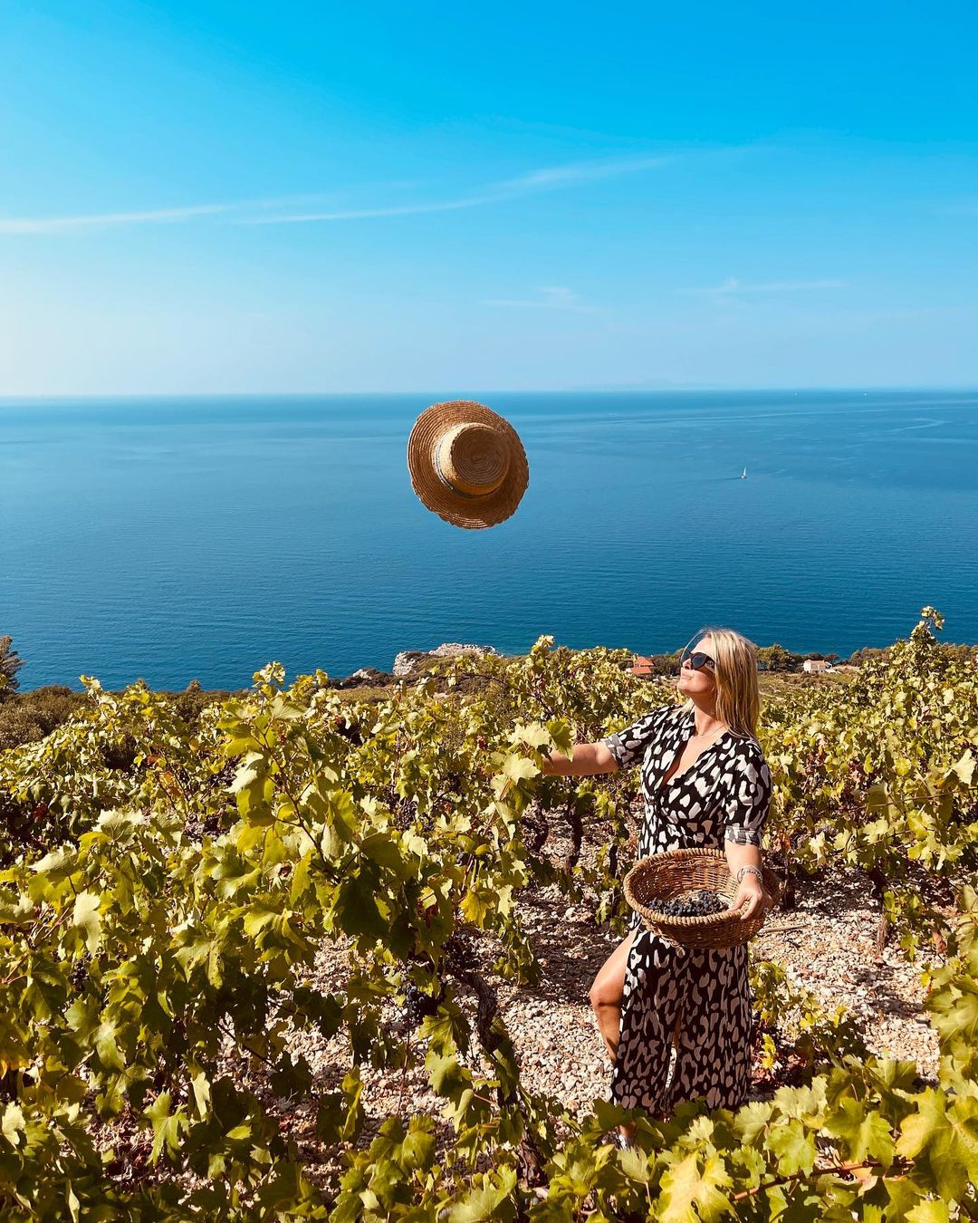 peljesac vineyards